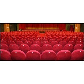 Teatro Le Sedie.Poltrona Sedia Seduta Da Teatro Cinema